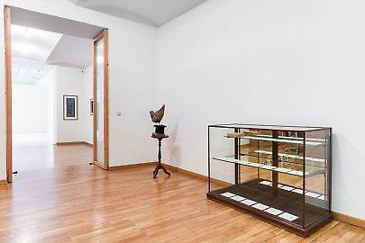 georg-kargl-fine-arts2021mark-dion26installation-view.jpg