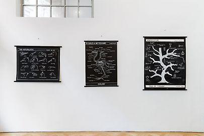 georg-kargl-fine-arts2021mark-dion28installation-view.jpg