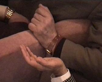 annadaucikovaordinaryvoyeurism-concertflorence-20052006.png