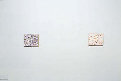 viennatransit-exhibitionview-photomatthiasbildsteinild4322.jpg