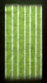 skiagrafik1.jpg